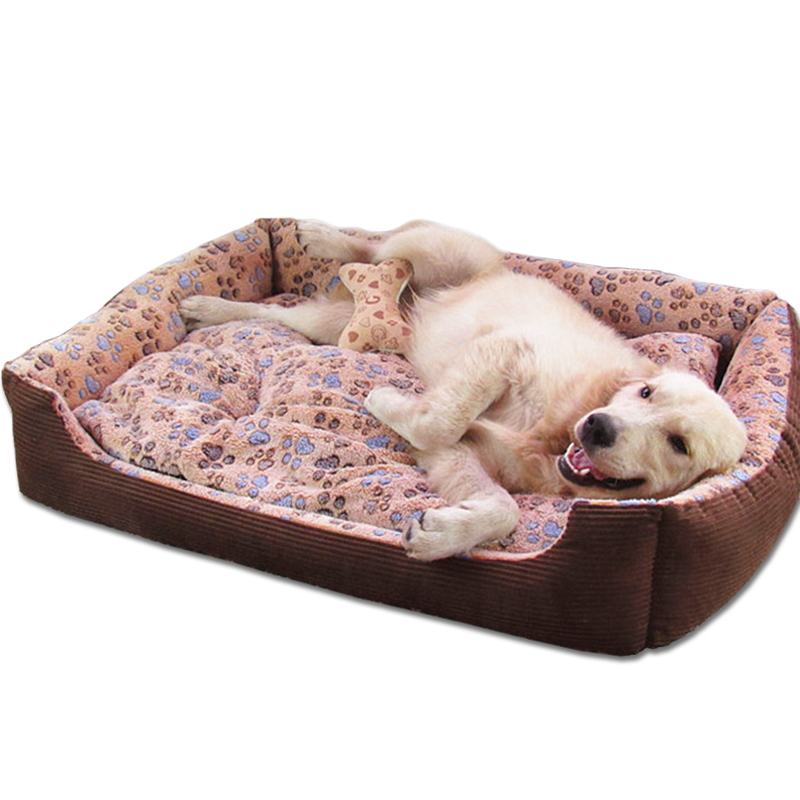 Sofa Beds For Small Dogs